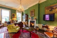 period fireplace in Dublin